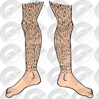 Hairy Legs Picture for Classroom / Therapy Use.