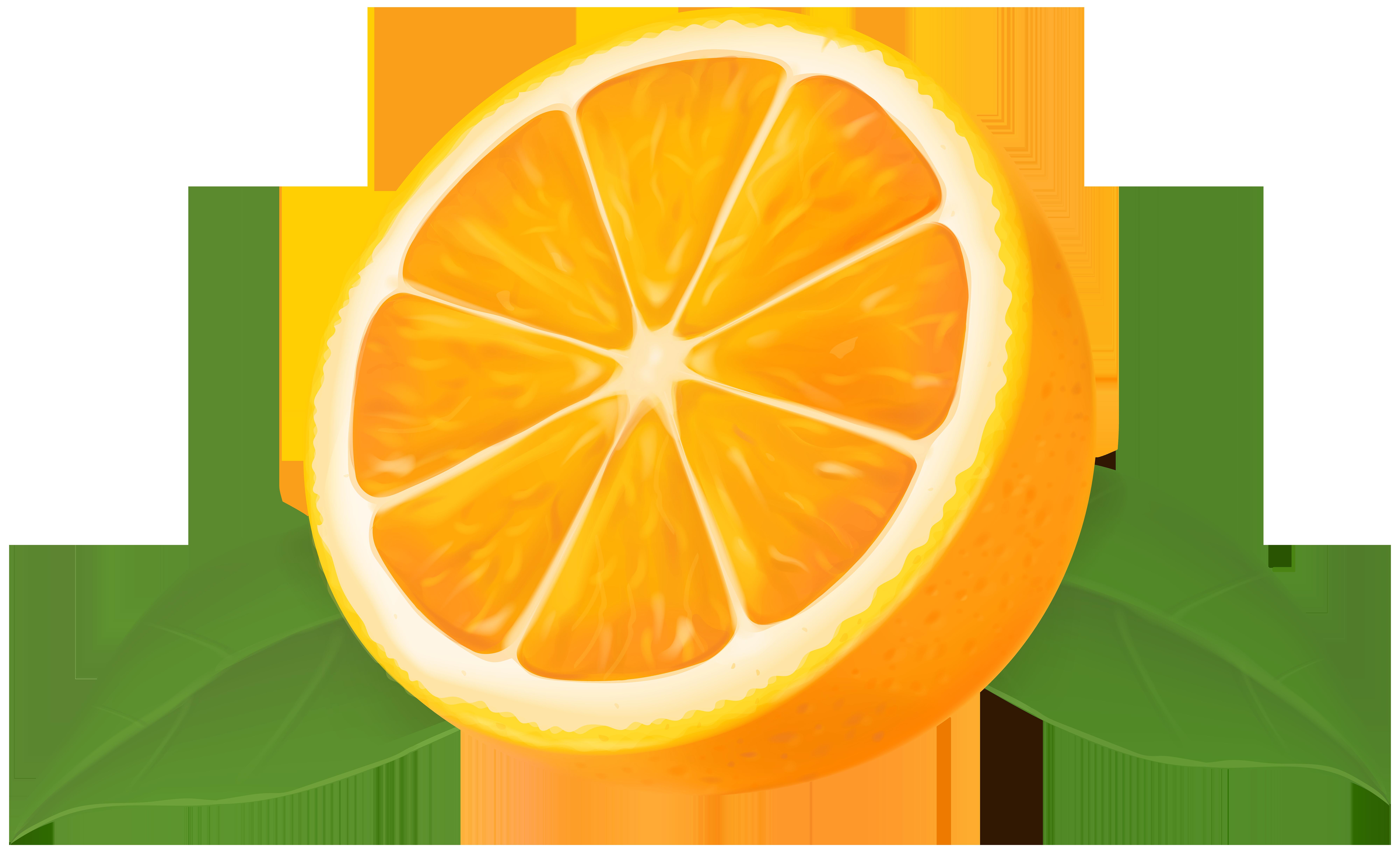 Half Orange Transparent Clip Art Image.