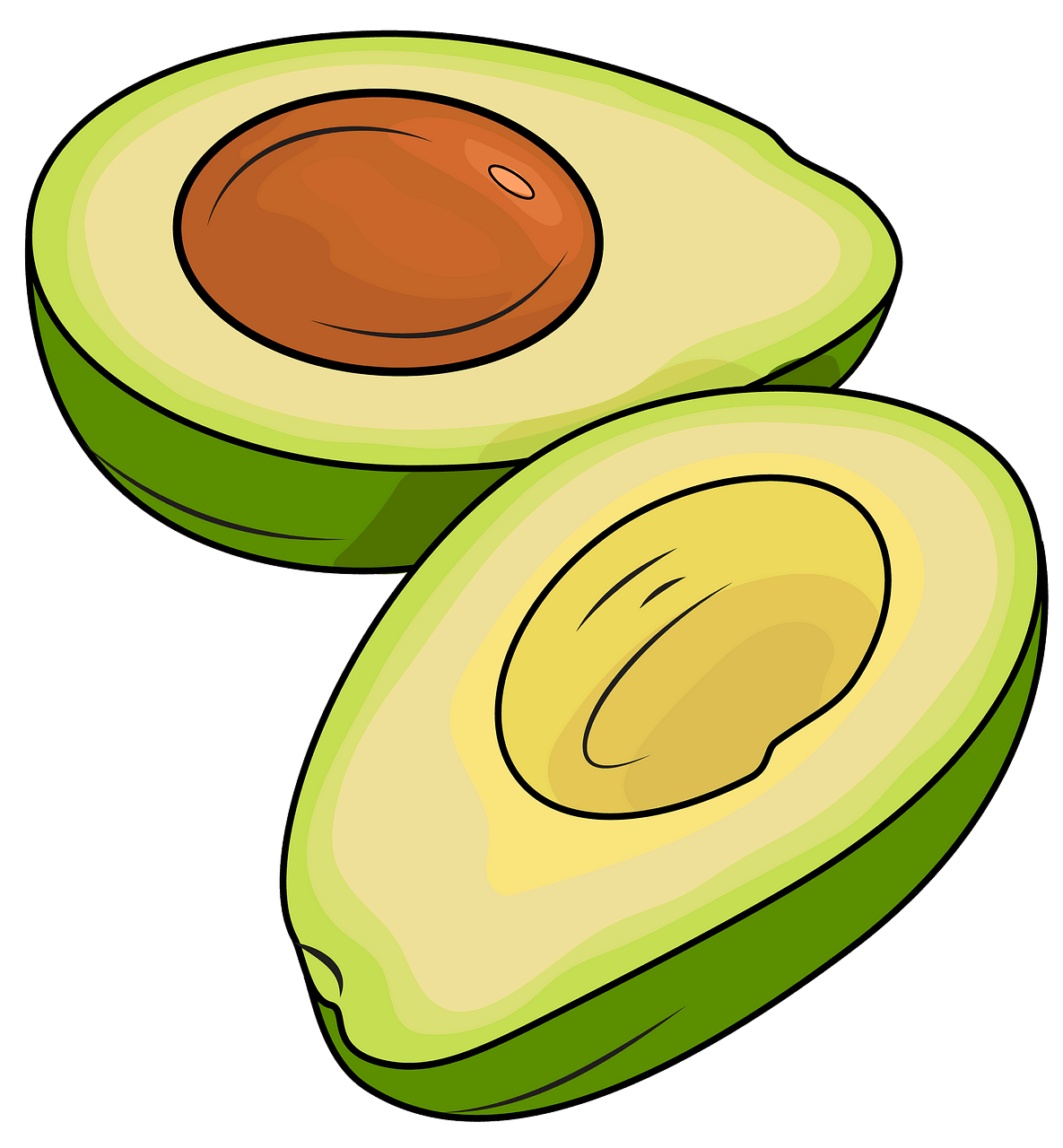 Avocado cut in half clipart. Free download..