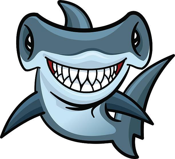 Best Hammerhead Shark Illustrations, Royalty.