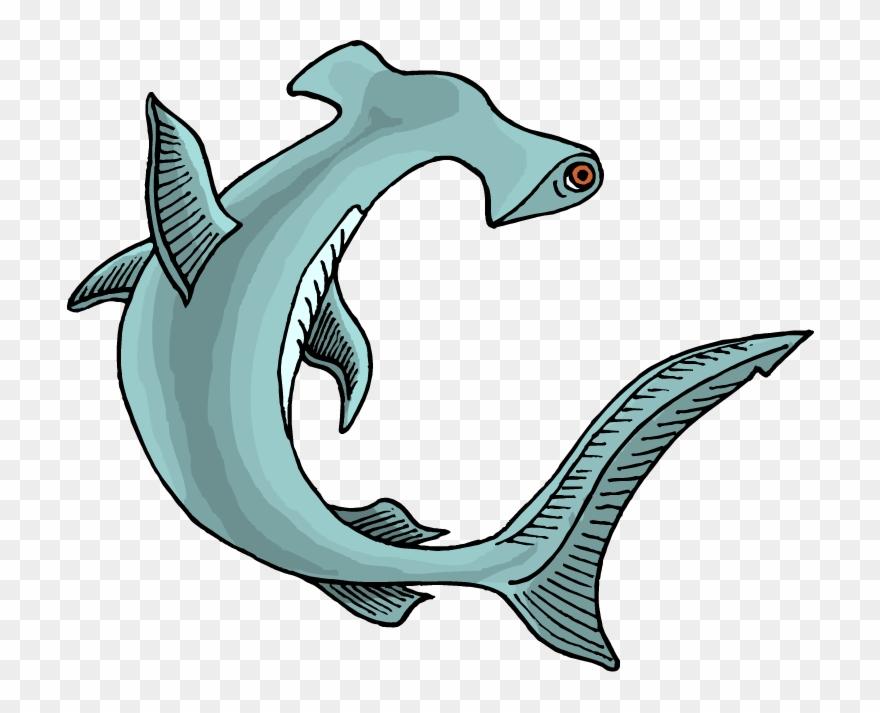 Shark Clipart Favorite Sites Sharks Shark.
