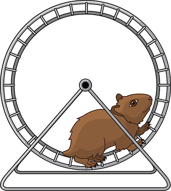 Best Hamster Wheel Illustrations, Royalty.