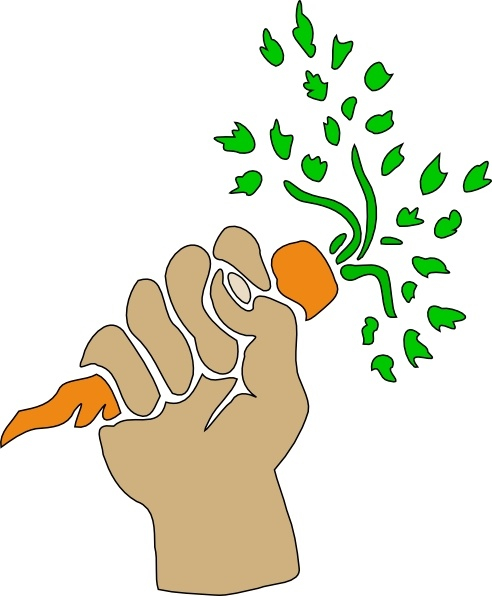 Hand Holding Carrot clip art Free vector in Open office drawing.