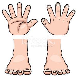Hände und Füße Clipart Image.