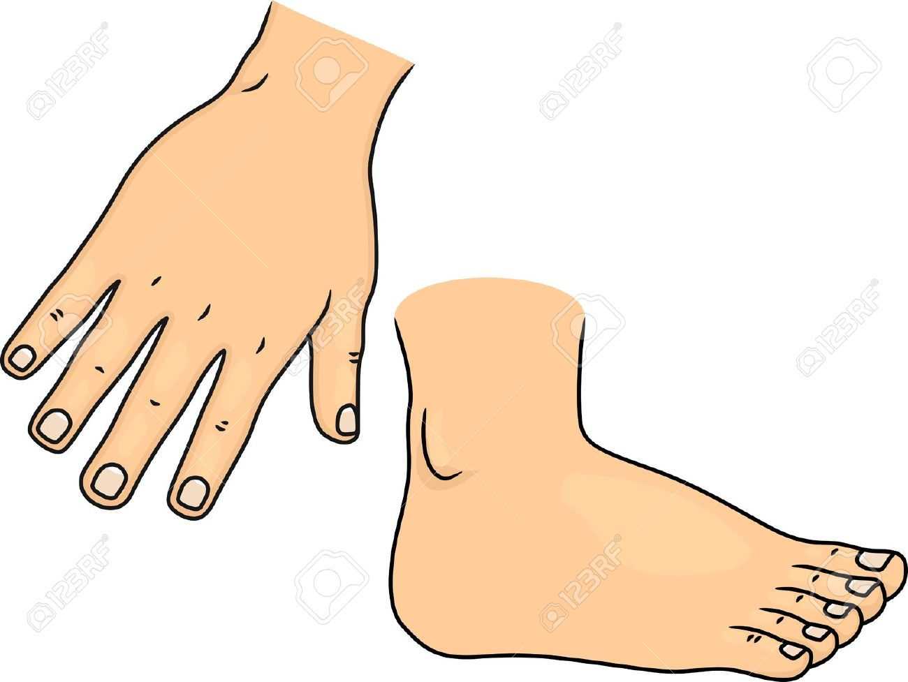 Hand And Foot Clipart.