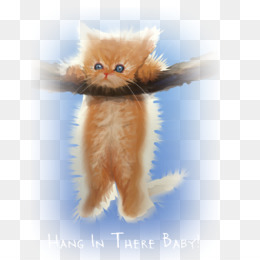 Hang In There PNG and Hang In There Transparent Clipart Free.