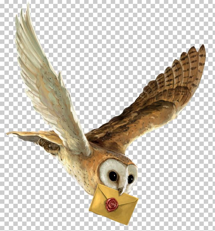 Harry Potter And The Philosopher\'s Stone Owl Hedwig Hogwarts.