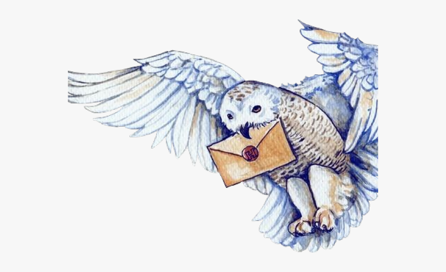 Harry Potter Clipart Hedwig.