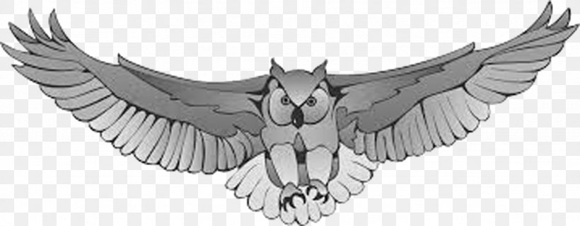 Great Horned Owl Harry Potter Drawing Clip Art, PNG.