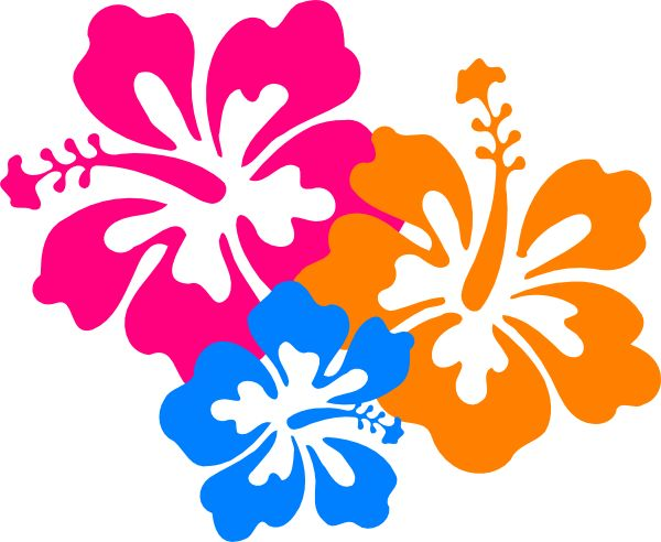 Hawaiian flower clip art borders free clipart images 4.