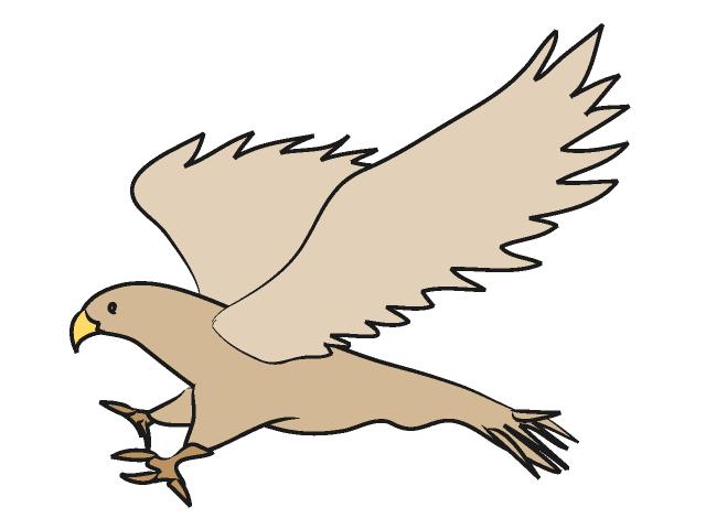 Hawk mascot clipart free clipart images.