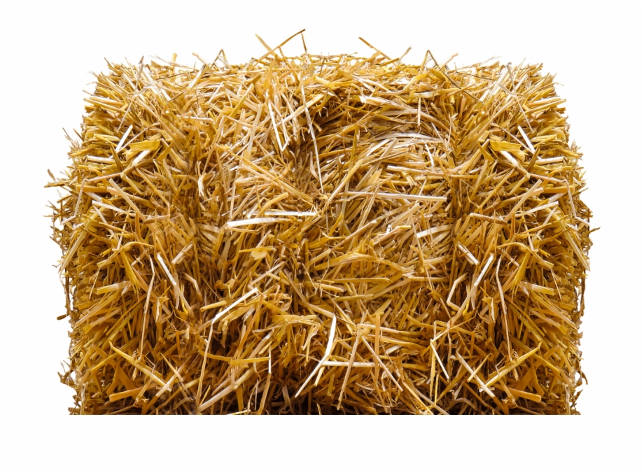 Straw Bale Hay Bale Png.