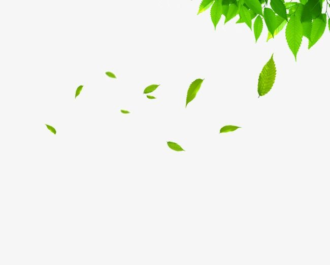 Floating Leaves, Leaf Clipart, Spring, Green Leaves PNG and.