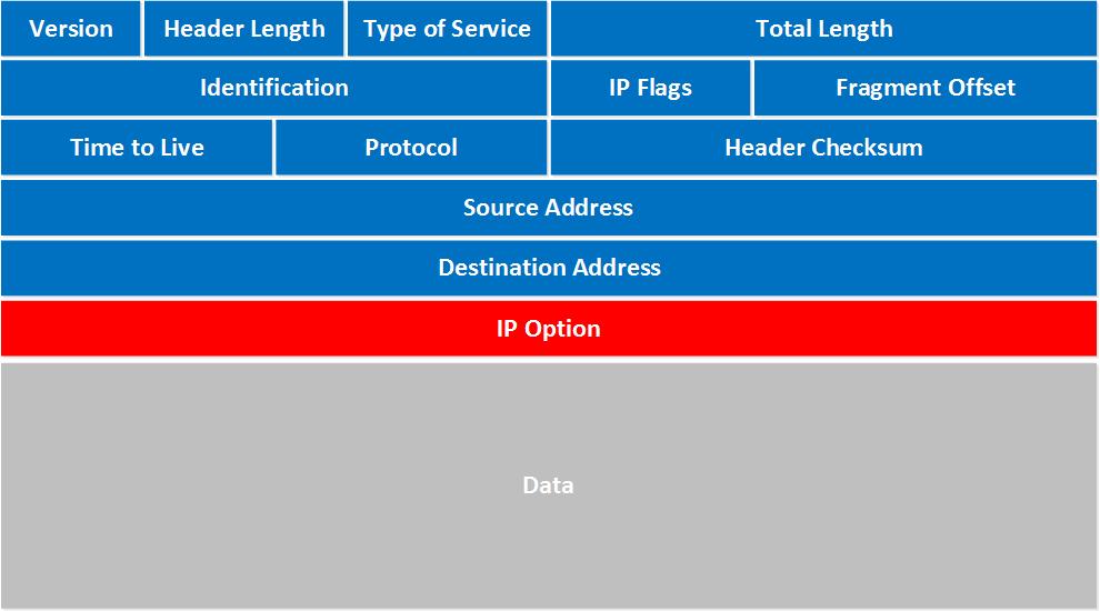 IPv4 Packet Header.
