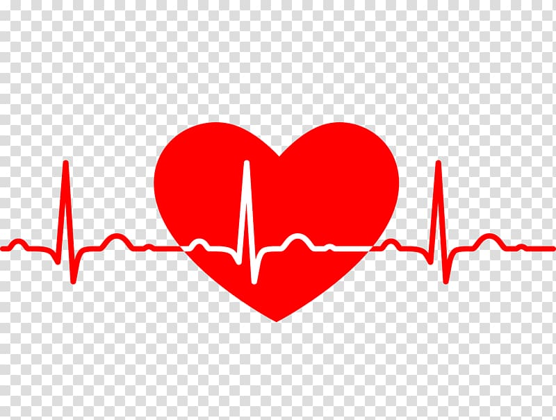 White and red heartbeat , Electrocardiography Heart rate Medicine.