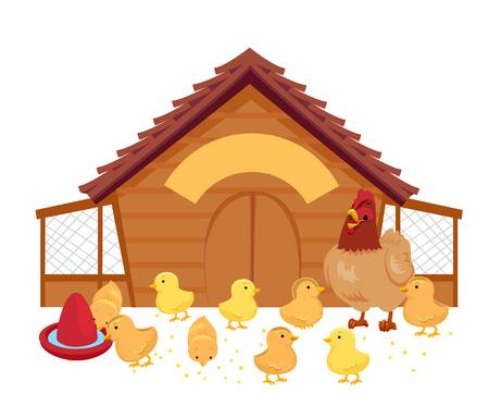 571 Chicken Coop Stock Vector Illustration And Royalty Free Chicken.