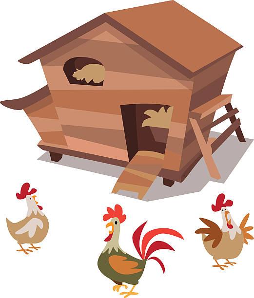 Best Chicken Coop Illustrations, Royalty.