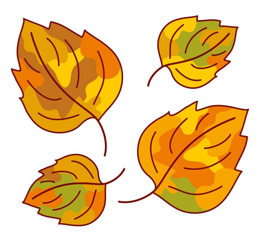 Herbstfest im Gartenverein \