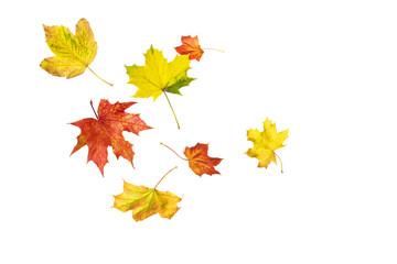 Herbstlaub Im Wind Clipart.