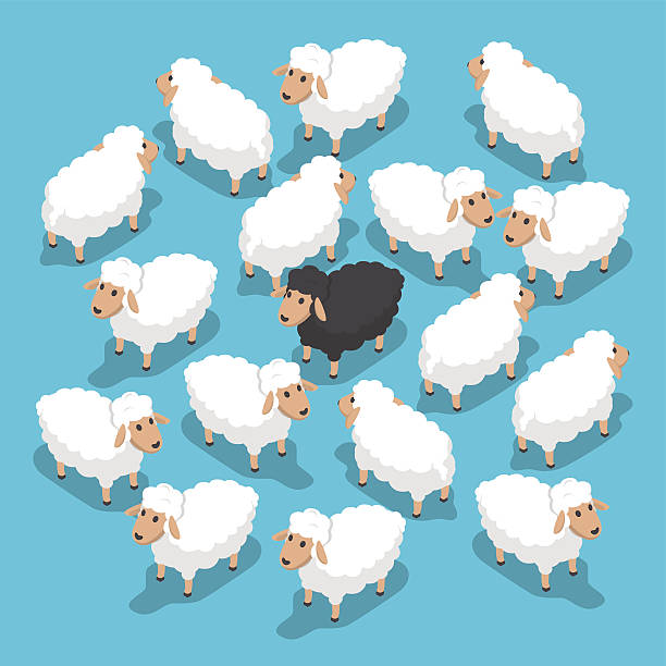 Herd Of Sheep Clipart.