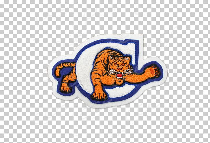 National Secondary School Texas High School Mascot PNG.