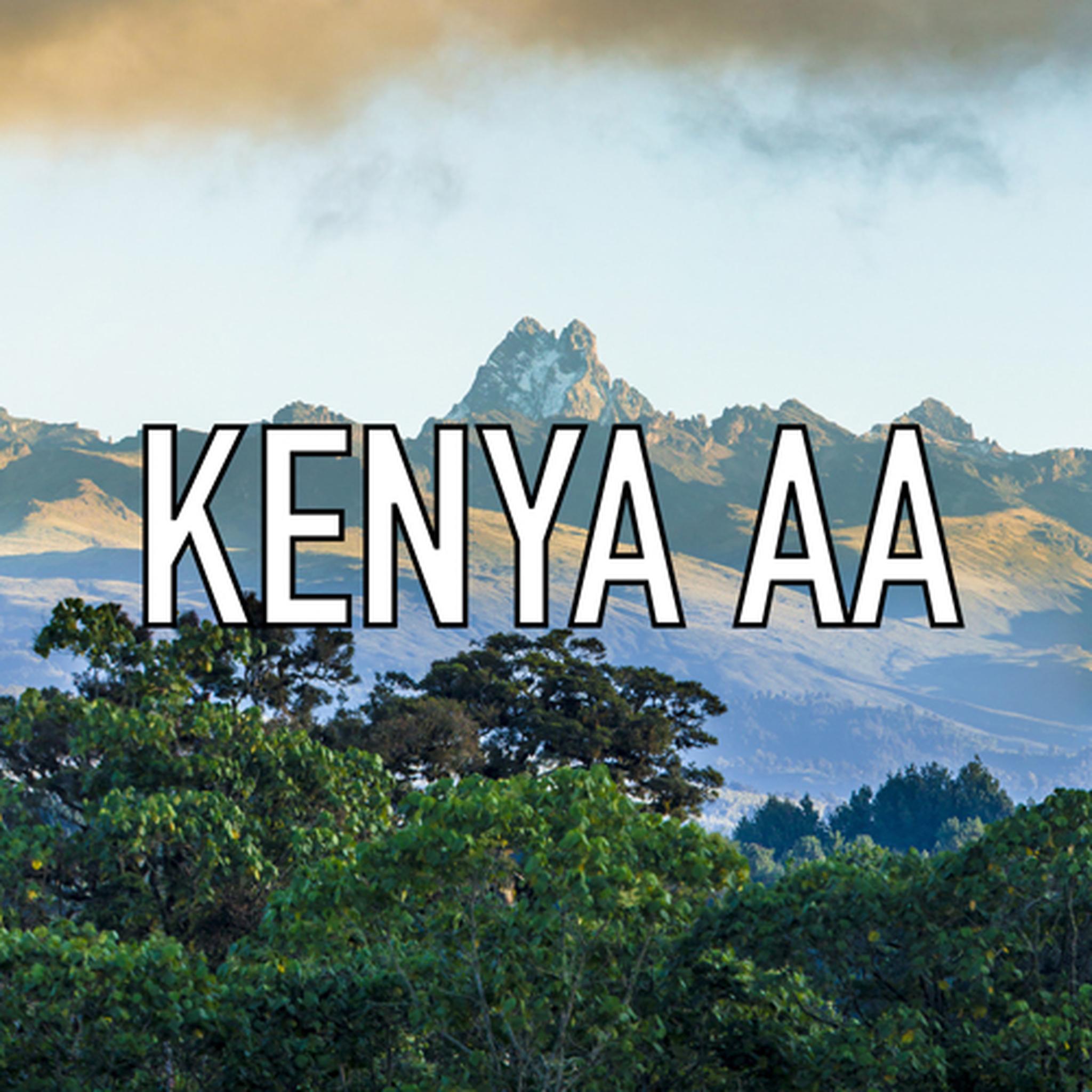 Kenya AA Coffee 16 oz.