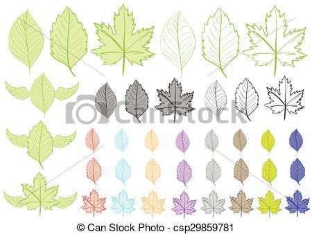Clipart con hojas de diferentes flores y formas..