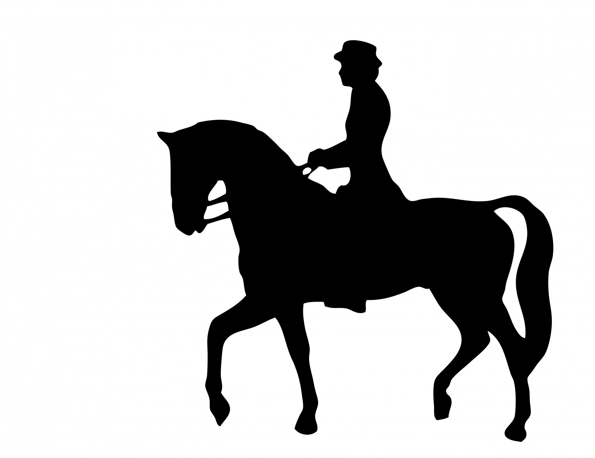 horse riding Silhouette.