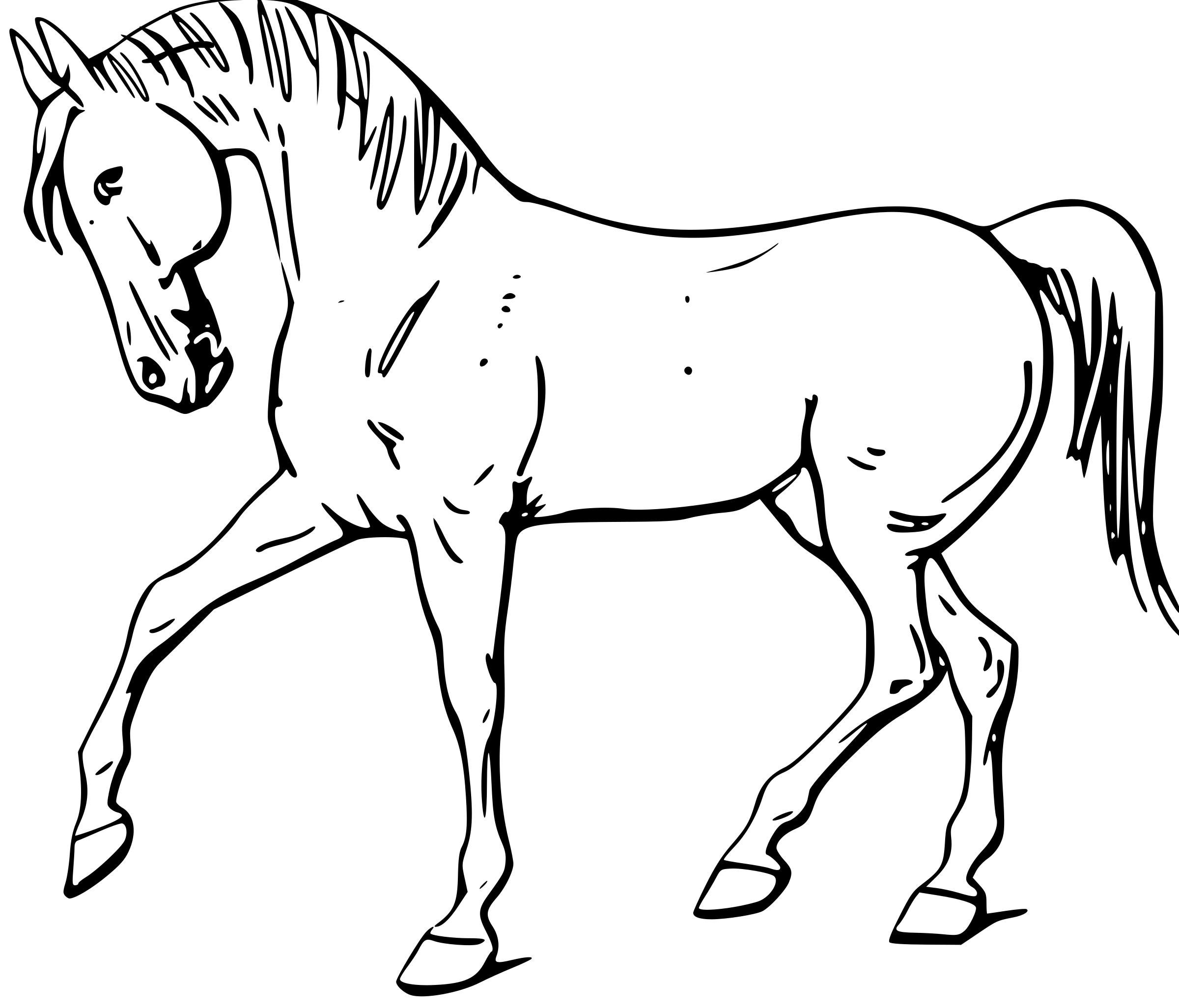 20635 Horse free clipart.