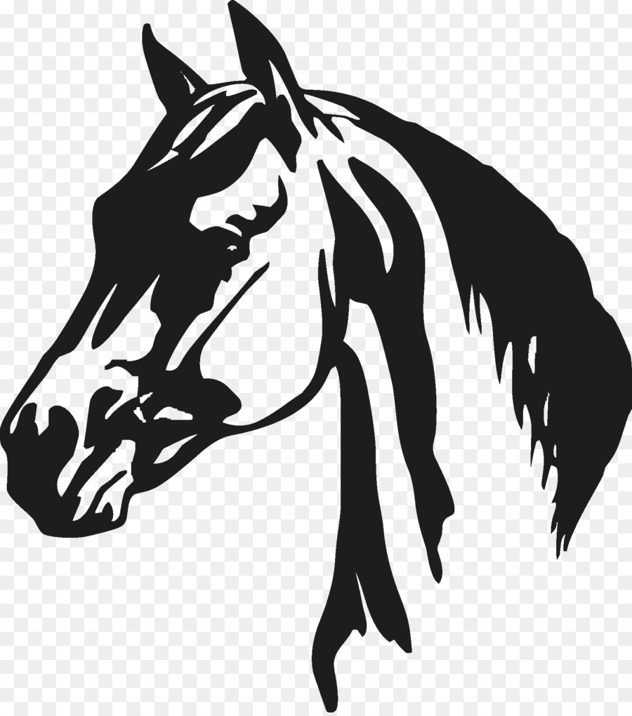 Horse Cartoon clipart.