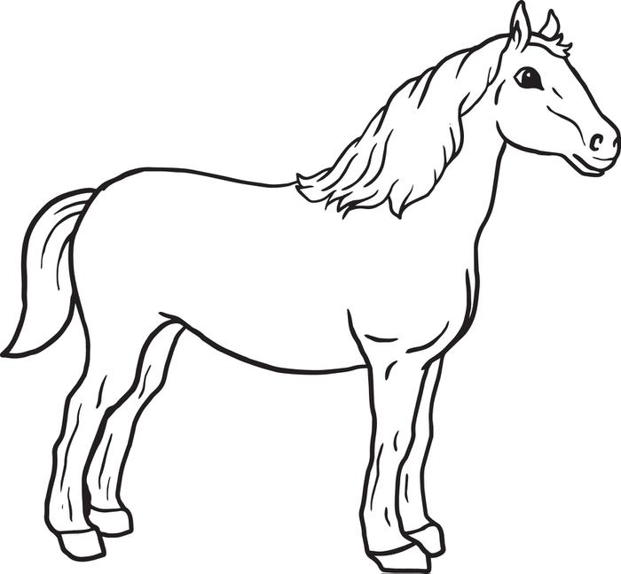 Coloring Picture Of A Horse Awesome With Photos Of Coloring.