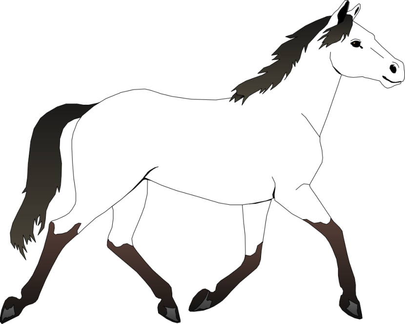 Clipart Horse To Color