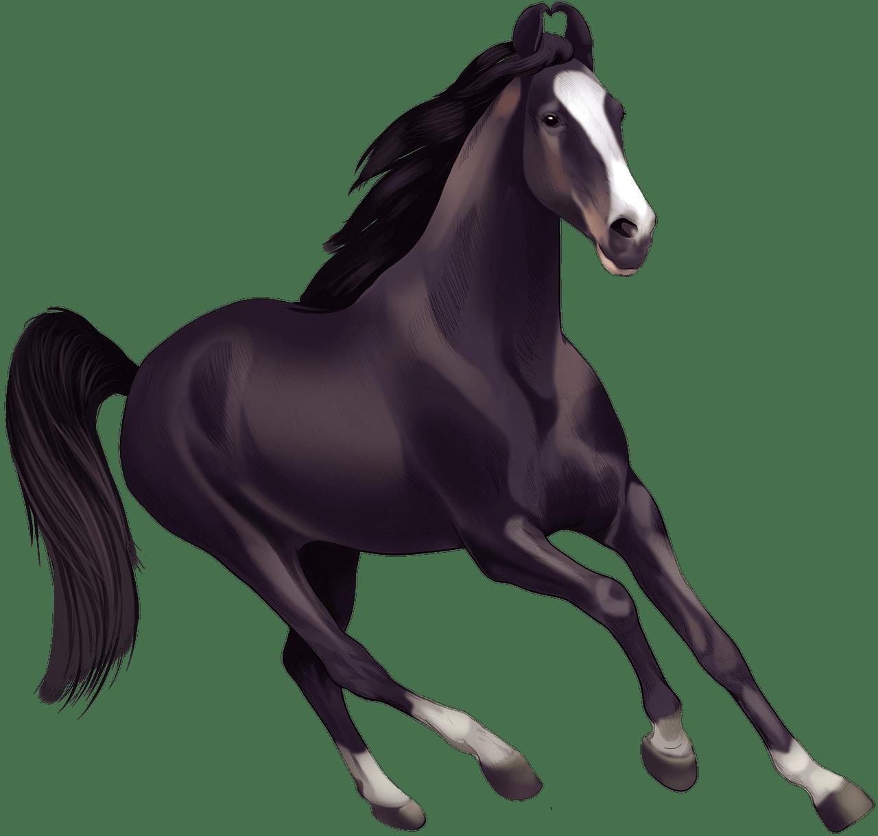 Marwari horse clipart. Free download..