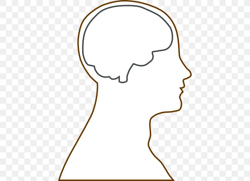 Outline Of The Human Brain Human Head Clip Art, PNG.