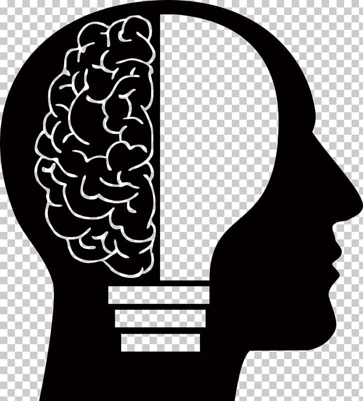 Human brain Homo sapiens Human head , Brain, human brain.