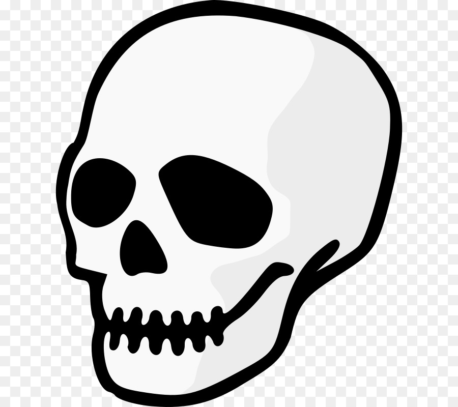 Human Skull Drawing clipart.