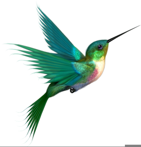Free Clipart Hummingbird.