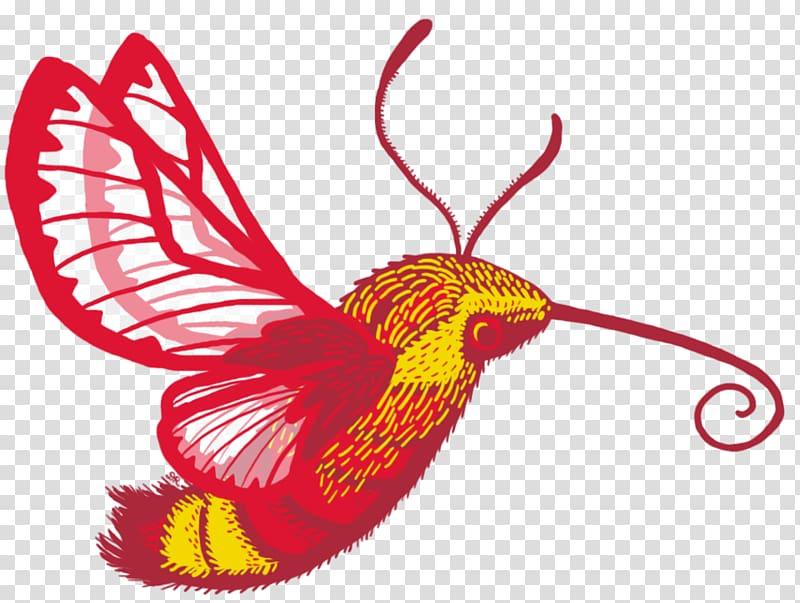 Butterfly Hummingbird hawk.