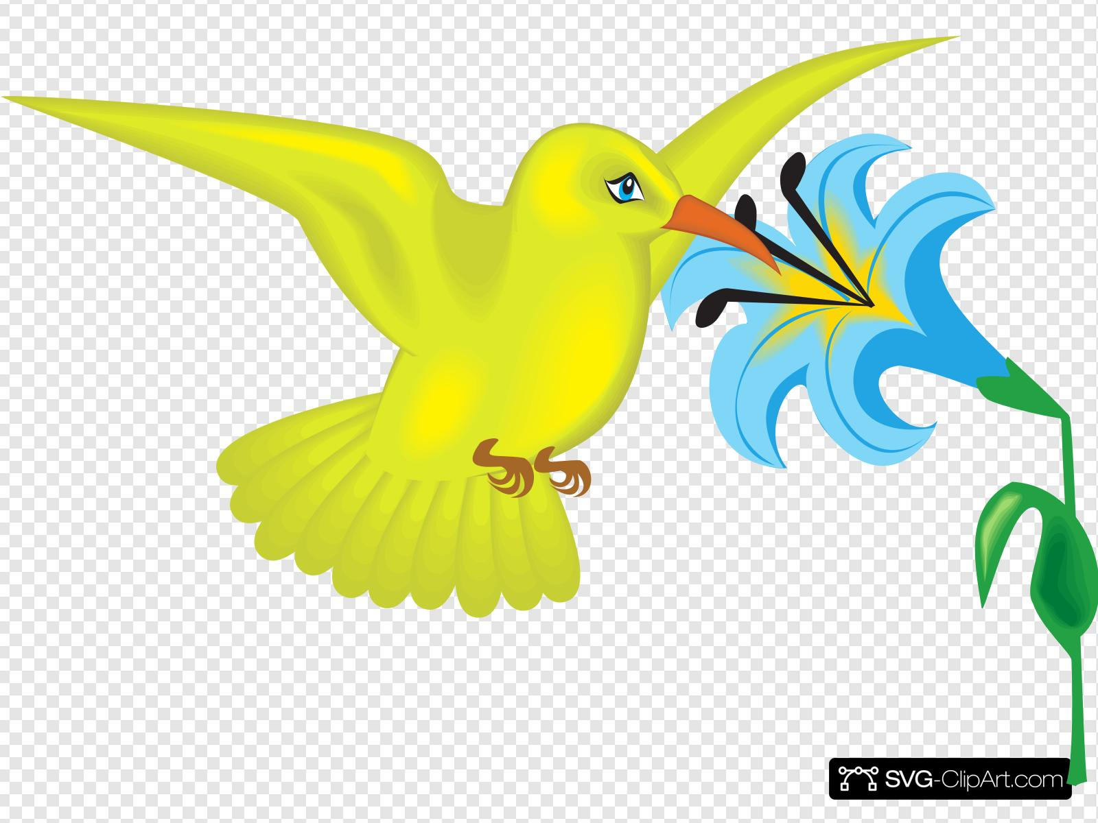 Yellow Hummingbird With Flower Clip art, Icon and SVG.