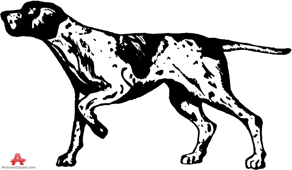 Dog Clipart Images Of Hunting Dogs Collection Transparent Png.