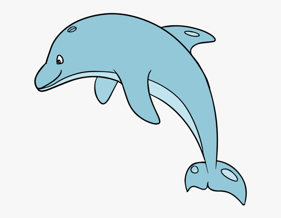 Make Your Website Responsive With The Dolphin Clipart.