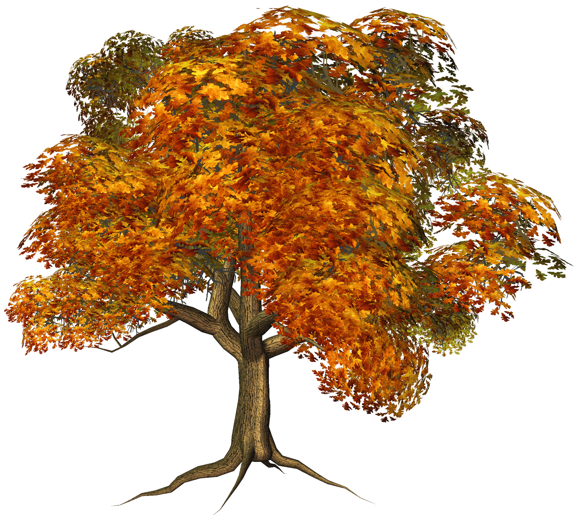 Large fall tree clipart gallery yopriceville high quality.