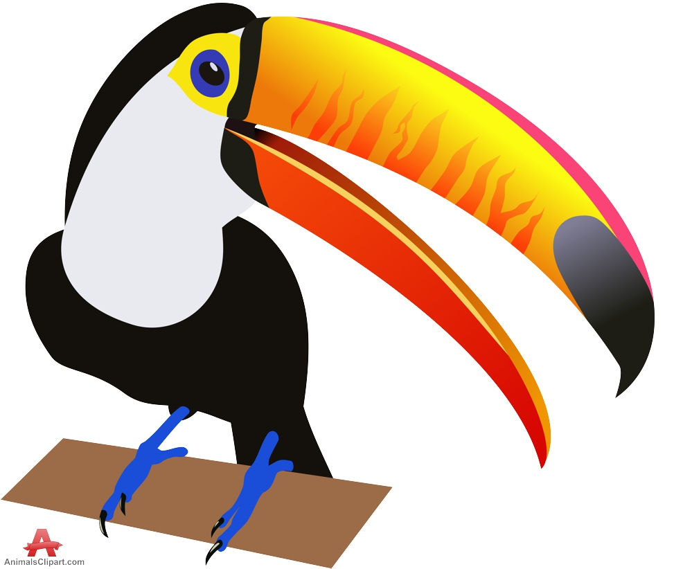 Birds animals clipart gallery free downloads by.