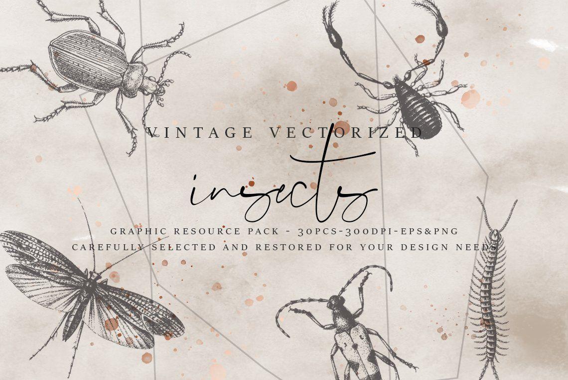 VintageVectorized.
