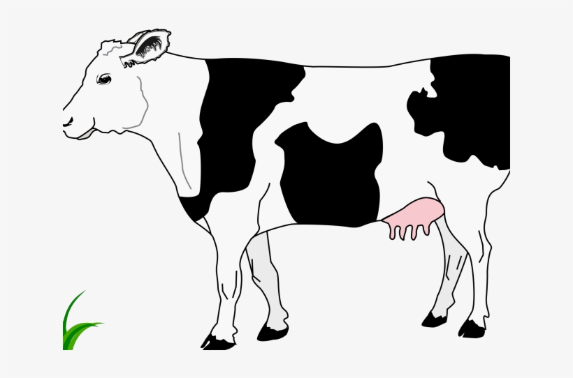 Cattle Clipart Cow Head.