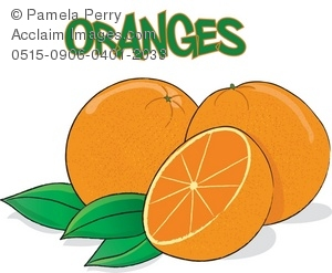 Clip Art Illustration of Oranges.