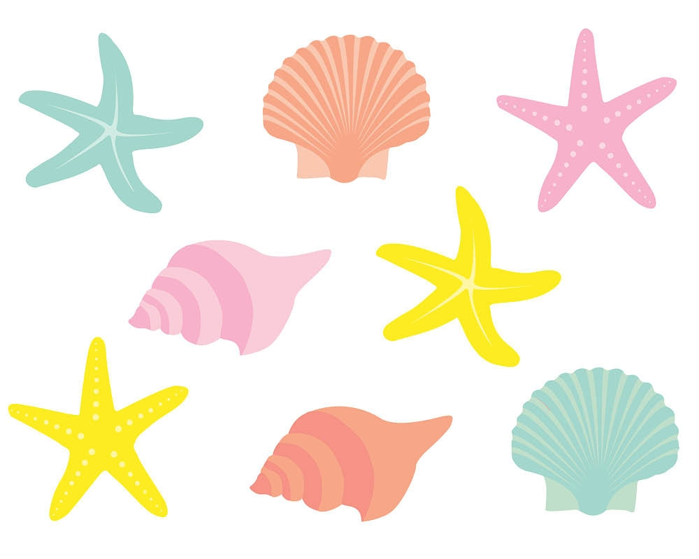 Seashells clipart Beautiful Cartoon Seashells » Clipart Station.