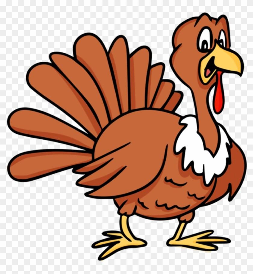 Free clipart turkeys 3 » Clipart Portal.