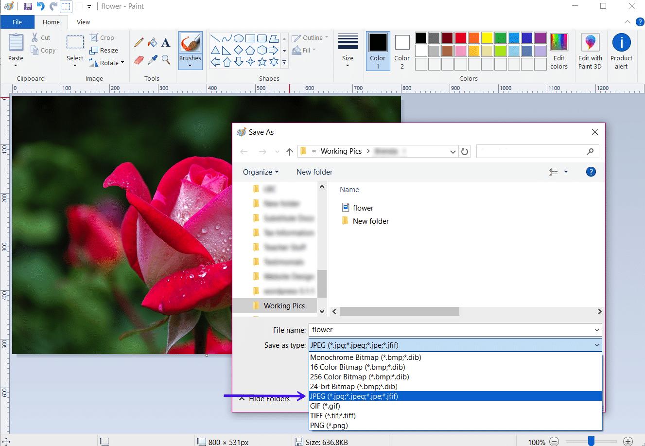 JPG vs. JPEG: Die gängigsten Bilddateiformate verstehen.