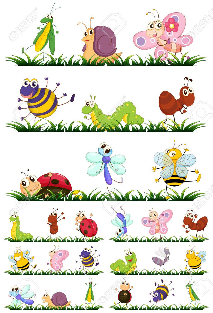 Different types of insects on grass illustration.